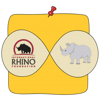 International Rhino Foundation Animals' Move