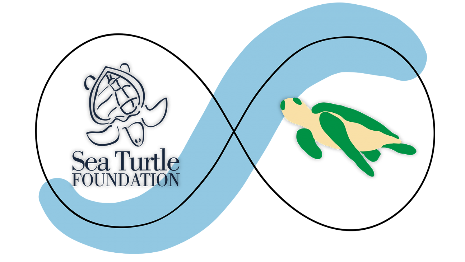 Partners_Page_Sea-Turtle_Fit