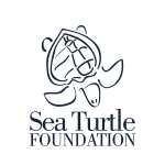 Sea Turtle Charity_fit